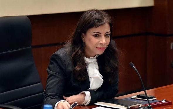 خورشيد: تنسق تنفيذ قرارات الأعلى للاستثمار مع الوزارات