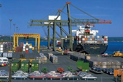«جمعية المصدرين» تستطلع فرص الصادرات المصرية إلى أسواق غانا