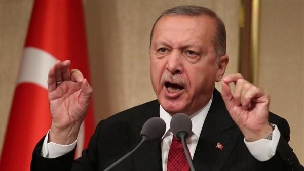 وزير الخارجية يستنكر تصريحات أردوغان حول وفاة محمد مرسي