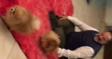 بعد عودته من السفر.. أحضان وقبلات بين خالد الصاوى وكلابه ..فيديو وصور