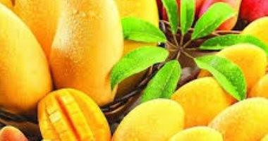 نقيب الفلاحين يؤكد تلف غالبية محصول المانجو للعام الحالى