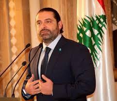 وزيرة الاستثمار: «الحريري» أعرب عن تقديره للدور المصري في المنطقة