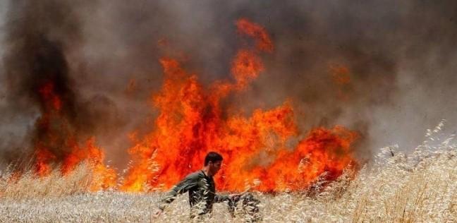 العرب و العالم | عاجل| اندلاع حرائق ضخمة في إسرائيل