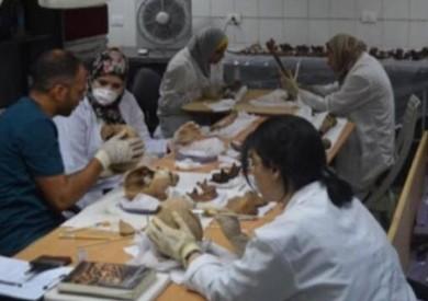 «الأعلى للآثار»: أشعة مقطعية لمعرفة سبب الكسر في إحدى جماجم «تابوت الإسكندرية»