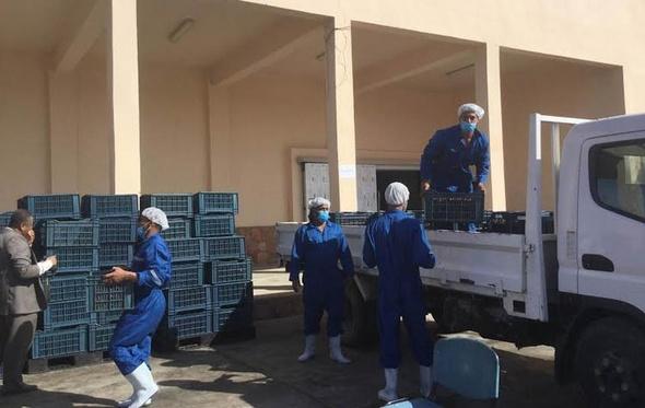 محافظ مطروح يدشن أعمال تطوير مصنع التمور في سيوة