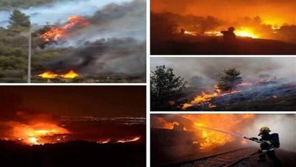 نتنياهو يستغيث..الحرائق تلتهم إسرائيل والخسائر فادحة..فيديو وصور
