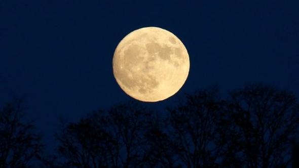 العالم يتابع القمر العملاق مع اقترابه إلى أقرب مسافة من الأرض منذ عام 1948