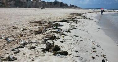 النائب فرج عامر: شاطئ النخيل بالإسكندرية تحول لمقبرة الشباب ونتمنى إغلاقه