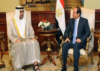 مصر والإمارات تؤكدان ضرورة لم الشمل العربي واحتواء الخلافات القائمة