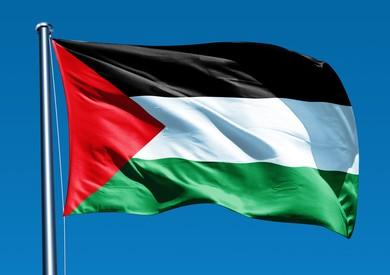 طارق فهمي: الفلسطينيون يثقون بمصر.. وإسرائيل تبحث عن شرق أوسط جديد تديره