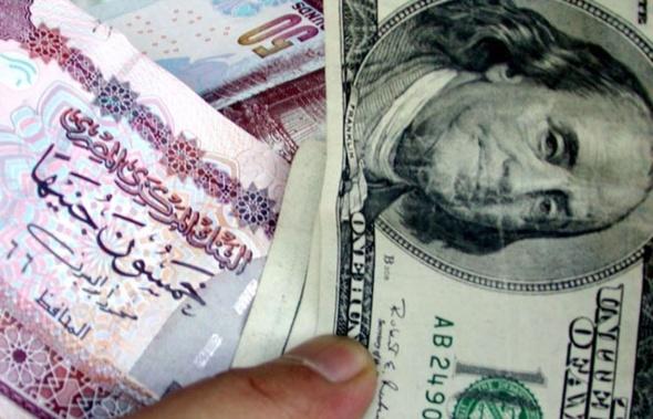 """المصرية للاستثمار المباشر عن """"تعويم الحنيه"""": يجب أن تتبعه آليات لجذب الاستثمار"""