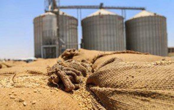 «الجنايات» تؤيد منع 27 متهمًا من التصرف فى أموالهم بفساد القمح