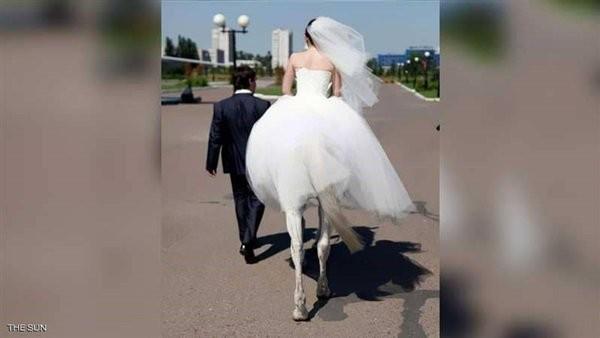 صورة زفاف المرأة الفرس بين الحقيقة والفوتوشوب