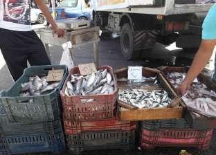 ضبط ملح طعام وأسماك فاسدة ومبيدات زراعية محظورة بالغربية