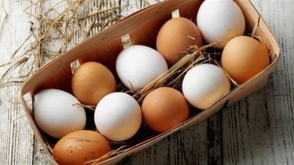 سر ارتفاع سعر البيض الأحمر عن الأبيض