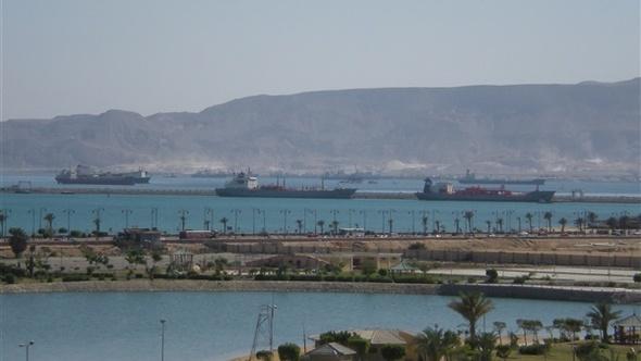 وصول 1595 رأس عجول حية لميناء أبو طرطور و6500 طن بوتاجاز للسويس