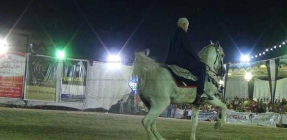 """""""الزراعة"""": إقامة مهرجان الخيول العربية بمحطة الزهراء 17 نوفمبر"""