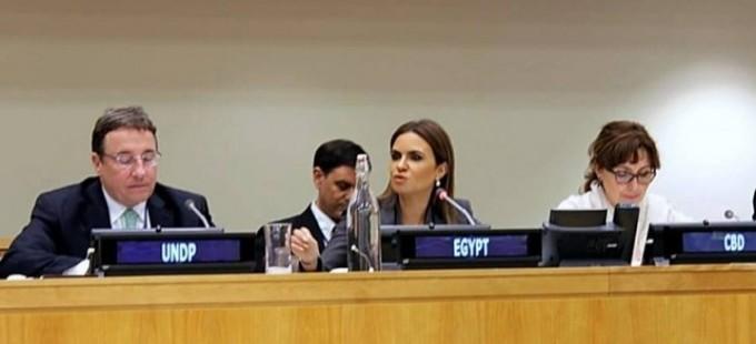 «الأمم المتحدة» تشيد باهتمام مصر بالاستثمار في العنصر البشري وتطوير البنية الأساسية