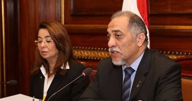 """رئيس """"تضامن البرلمان"""": عازمون على استكمال البناء رغم المؤامرات والإرهاب"""