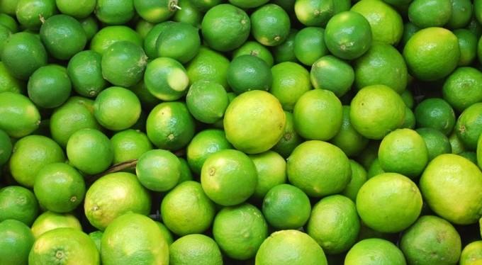 نقيب الفلاحين يكشف سبب ارتفاع أسعار «الليمون
