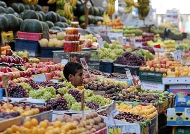 «الزراعة»: حملات مقاطعة الفاكهة ليست الحل.. وهدفها «الشو الإعلامي»