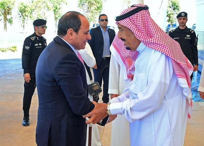 متحدث «الرئاسة» يكشف تفاصيل قمة «السيسي» والملك سلمان في نيوم