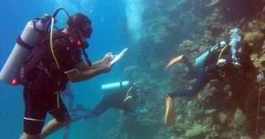 البيئة تنظم دورة الغواص البيئى للعاملين بالمحميات البحرية
